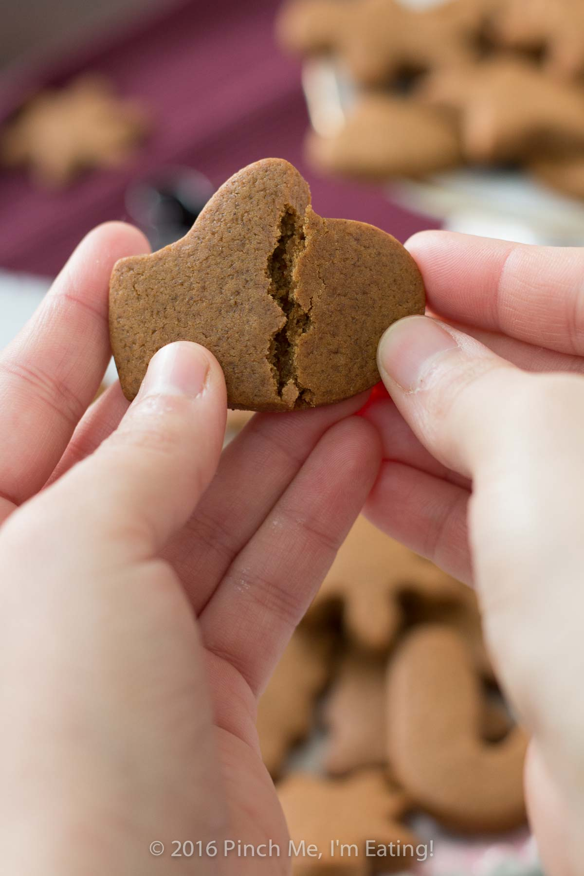 Hands breaking apart chewy gingerbread cookie to show soft texture
