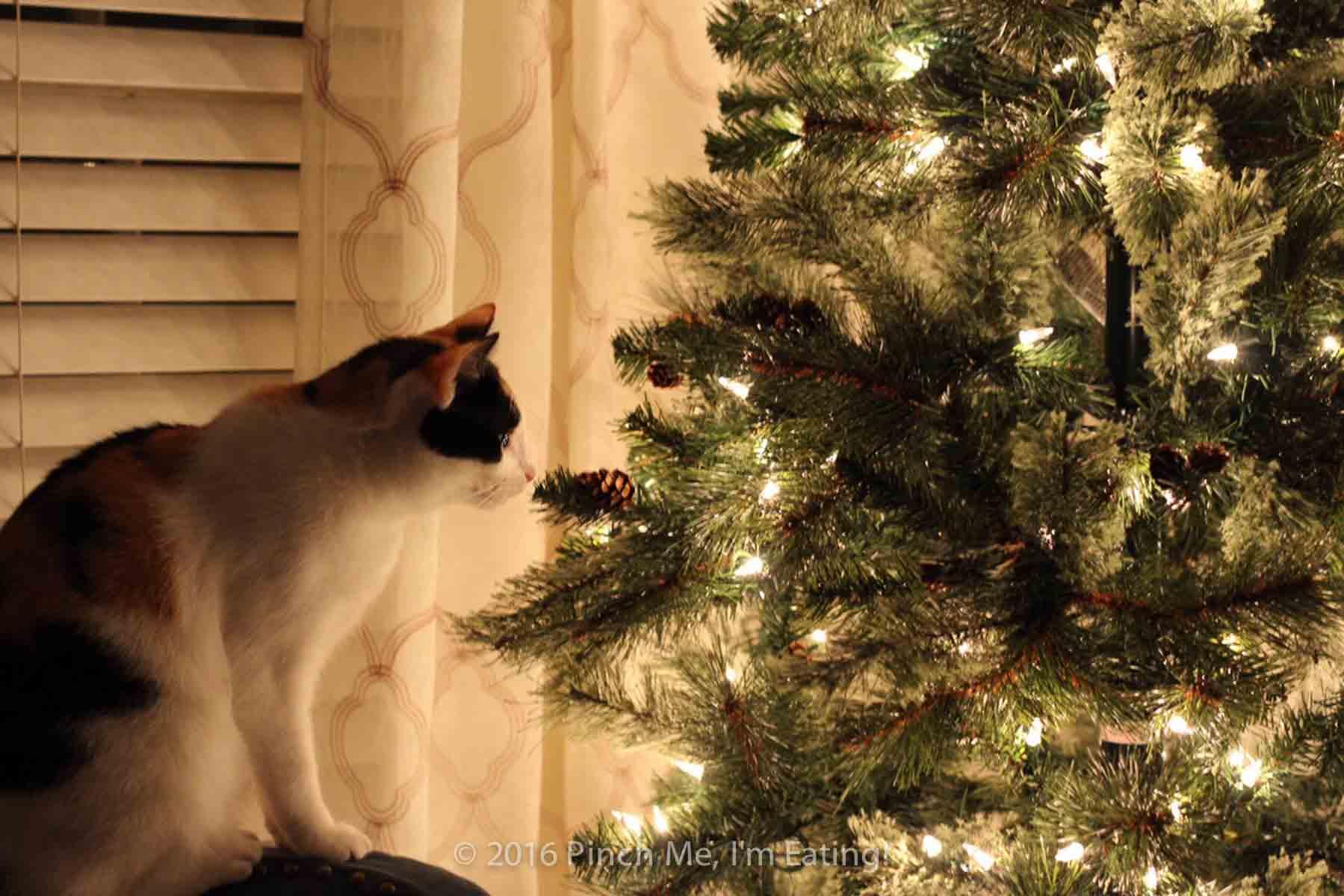 Cat Eating Fake Christmas Tree